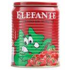 7896036094983_Extrato-de-tomate-Elefante---340g.jpg