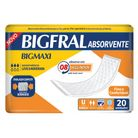 7896012802045_Absorvente-geriatrico-Big-Max---20-unidades