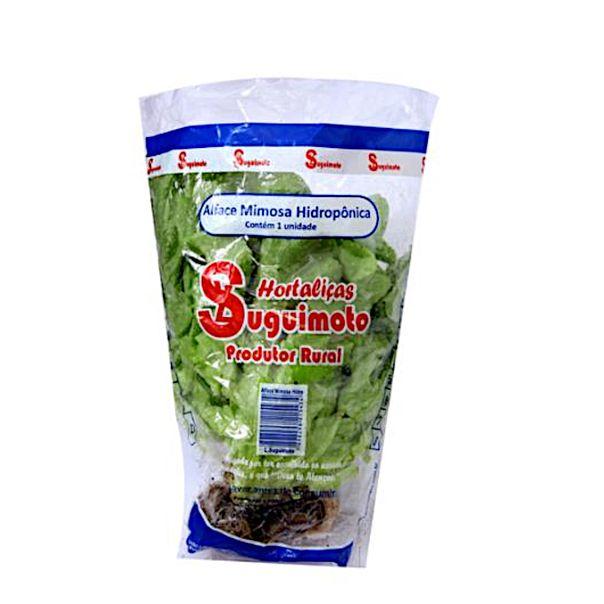 Alface-mimosa-hidroponica-01-unidade-Suguimoto