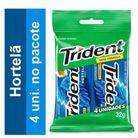 Chiclete-de-hortela-4-unidade-Trident