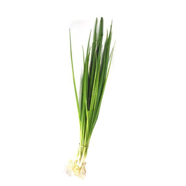 Cebolinha-organica-01-unidade-Vida-Natural