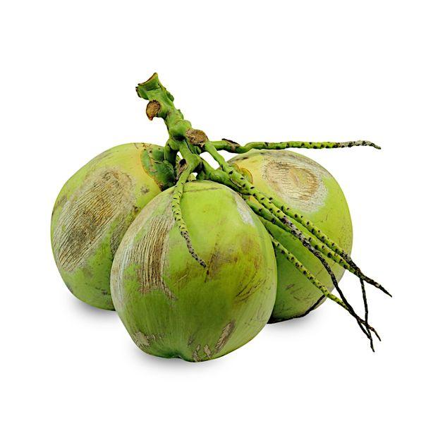 Coco-verde-01-unidade-Benassi